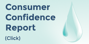 Read Confidence Report
